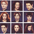 Olympic Coven - twilight-series photo