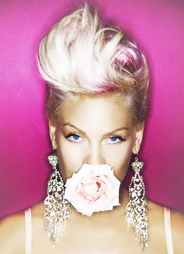 pink - Pink Photo (6311706) - Fanpop