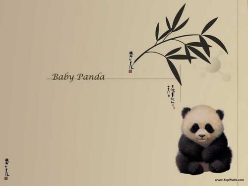 Pandapaper