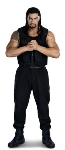 The Shield (WWE) wallpaper probably with long trousers, a legging, and slacks titled Roman Reigns