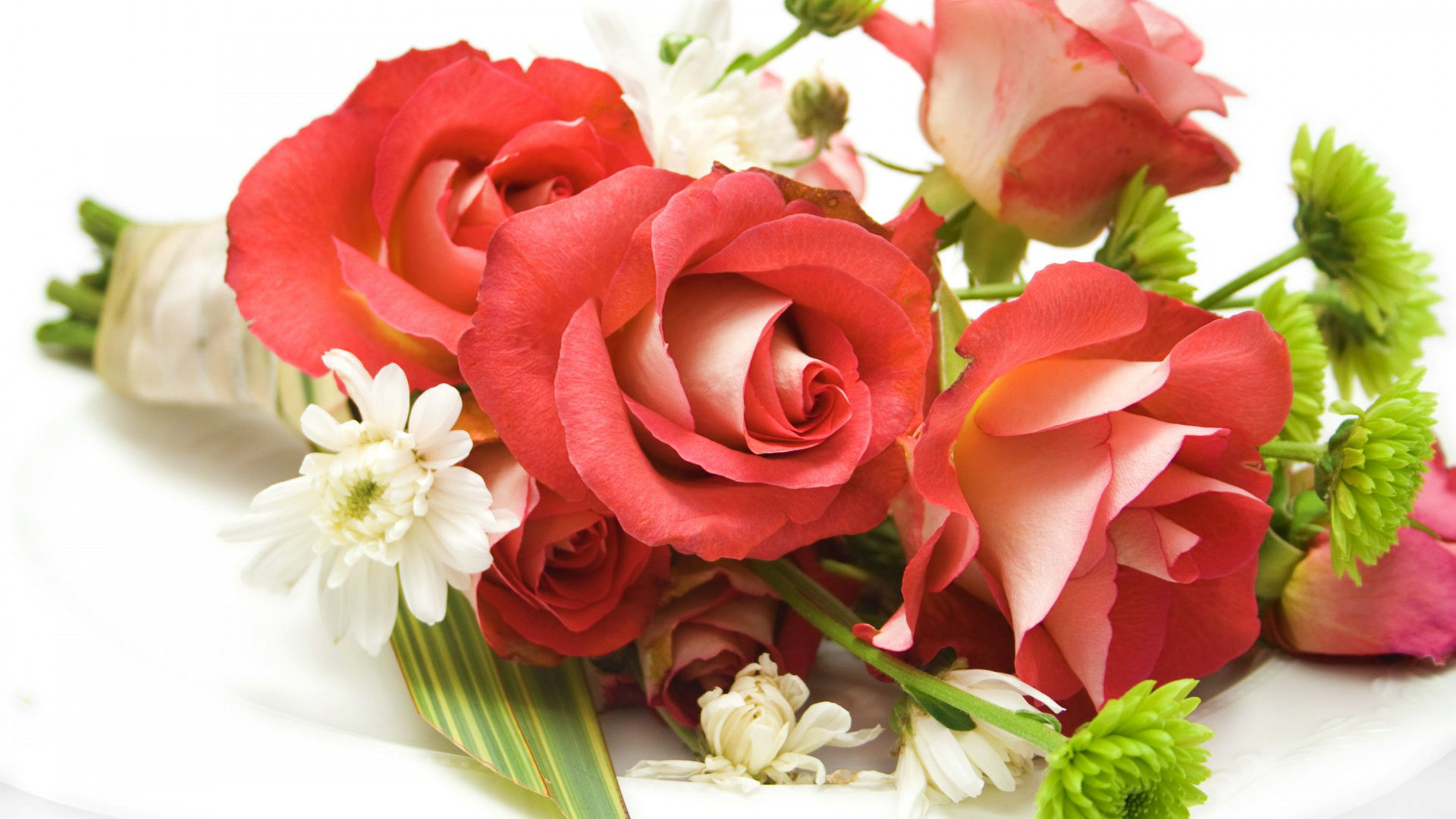 Flowers Images Roses Hd Wallpaper And Background Photos 33460137