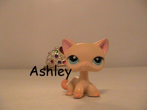 Some of my LPS