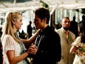Stefan&Caroline ✯