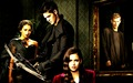 TVD Season4  - the-vampire-diaries-tv-show wallpaper