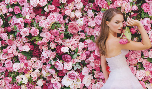 Natalie Portman wallpaper containing a bouquet, a bridesmaid, and a begonia titled The New Miss Dior Campaign !!!