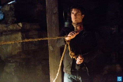 The Vampire Diaries - Episode 4.14 - Down the Rabbit Hole - Promotional ছবি