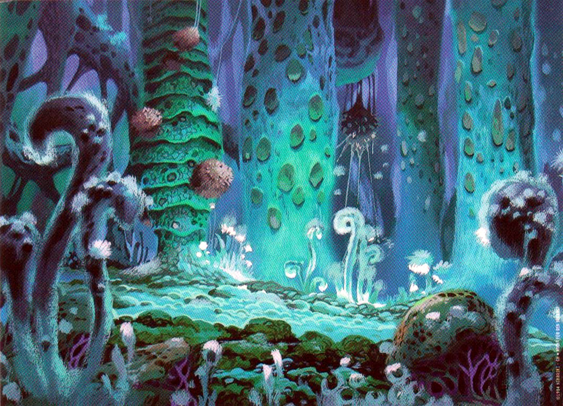 Nausicaa of the Valley of the Wind images The forest HD ...
