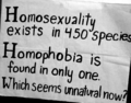 Think about it... - gay-rights photo