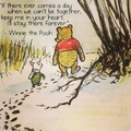 Winnie the Pooh >