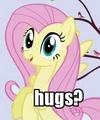 Yes hugs!! - fluttershy photo