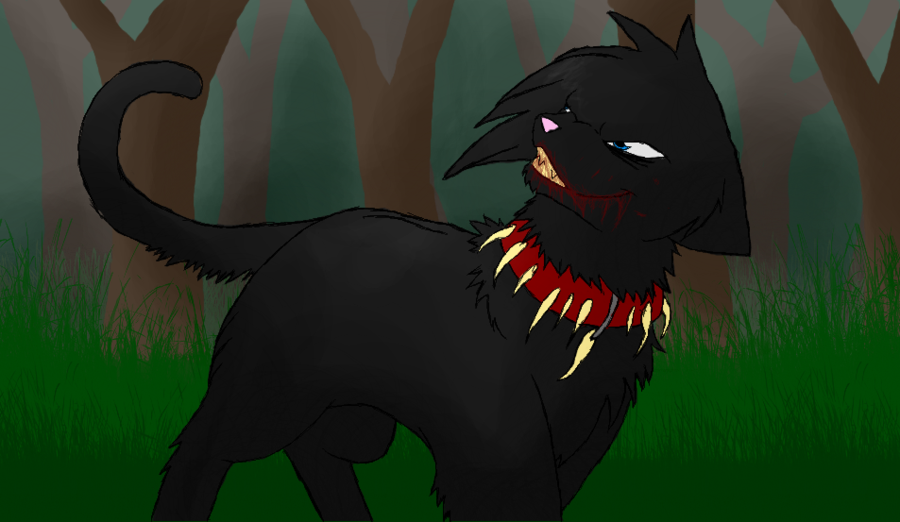 Warrior Cats Scourge Human