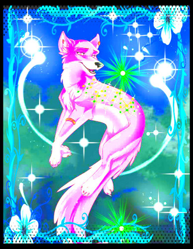 lily lobo