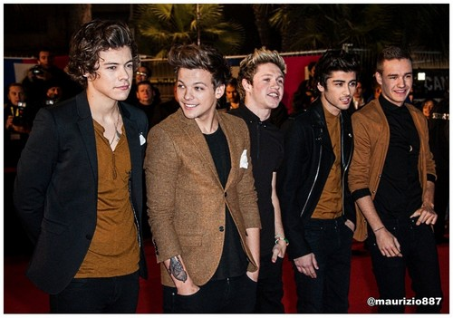 one direction,NRJ muziek Awards 2013