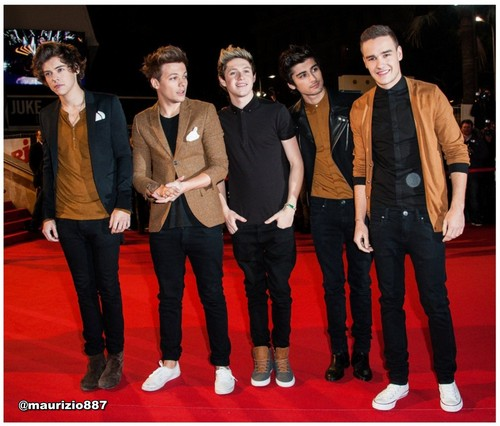 one direction,NRJ musique Awards 2013