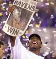 ravens - baltimore-ravens photo