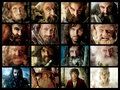the hobbit - the-hobbit fan art
