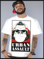 urban assault - rap-and-hip-hop photo