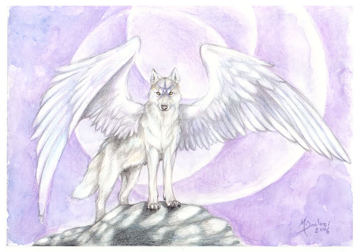 AerinDeer28's Angels & demons wolf pack images white angel ...