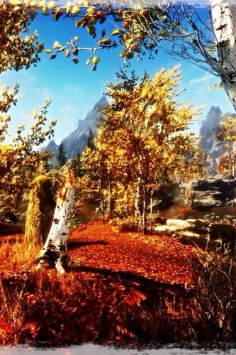 **•Beautiful PS3 Skyrim•**