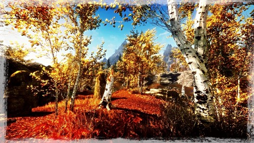 **•Beautiful PS3 Skyrim•**
