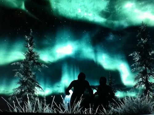 **•Beautiful Skyrim padang di kutub, tundra Lights!•**
