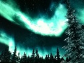 **•Beautiful Skyrim Tundra Lights!•** - elder-scrolls-v-skyrim photo