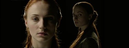 Sansa Stark S 3