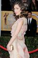 19th Annual Screen Actors Guild Awards in Los Angeles 2013 - rose-byrne photo