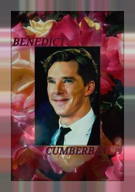 Benedict Cumberbatch amongst the rosas