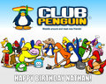 CLUB PENGUIN - club-penguin fan art