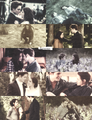 Edward, Bella&Nessie - twilight-series photo