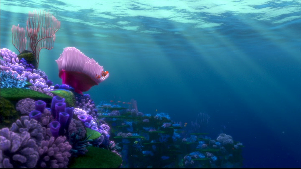 disney images finding nemo hd wallpaper and background