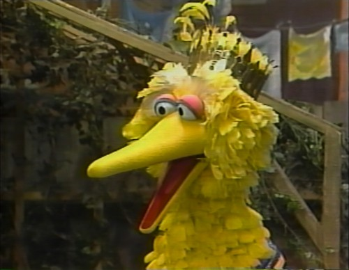 Sesame Street wallpaper titled Prince Big Bird - I'm Glad I'm Me