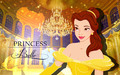 Princess Belle Wallpaper - disney-princess wallpaper