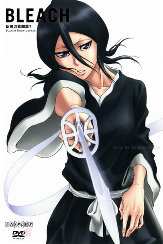 Bleach Anime wallpaper probably with anime entitled Rukia