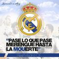 Siempre fieles Hala Madrid - real-madrid-cf photo