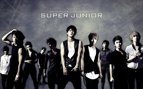super junior fondo de pantalla containing a well dressed person entitled Super Junior