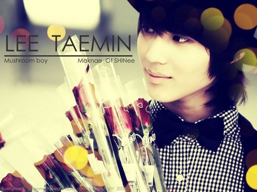 Taemin wallpaper
