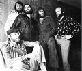 The Beach Boys - the-beach-boys photo