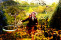 The Hobbit - the-hobbit-an-unexpected-journey fan art