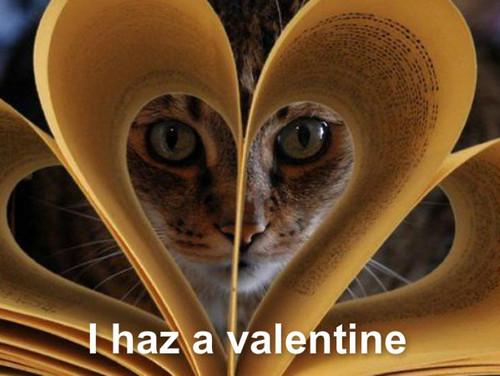 Valentines 일