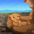 baby Nala - the-lion-king photo