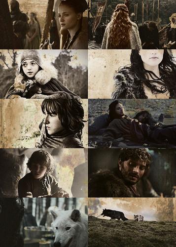 Stark Kids