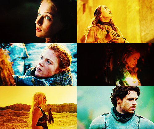 Game of Thrones + Profiles