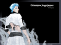 grimmjow - bleach-anime wallpaper
