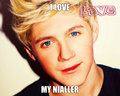 nialler - niall-horan fan art