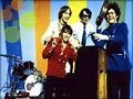 ★ The Monkees ☆  - the-monkees wallpaper
