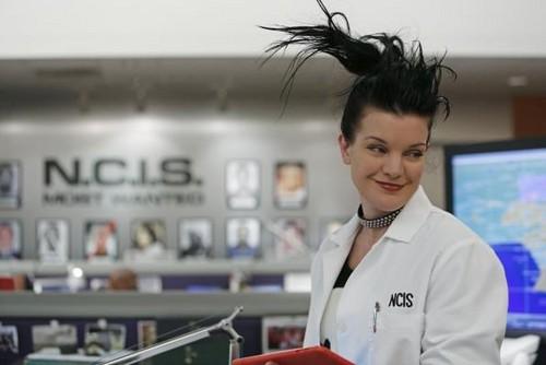 Abby Sciuto // Crazy Hair