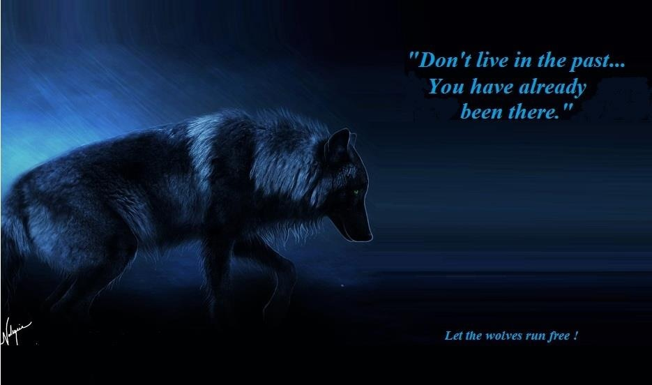 Lone wolf quotes - photo#11