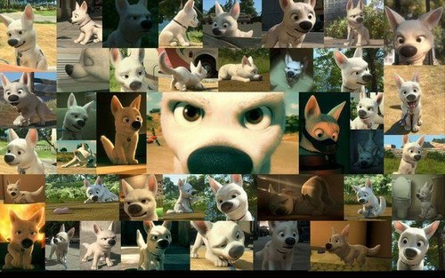 Bolt Collages